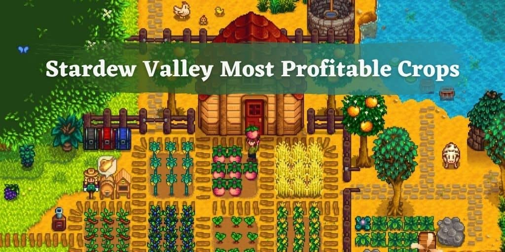 Stardew Valley Most Profitable Crops
